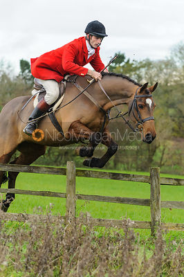Alex Knott - The Cottesmore Hunt at Tilton on the Hill, 9-11-13