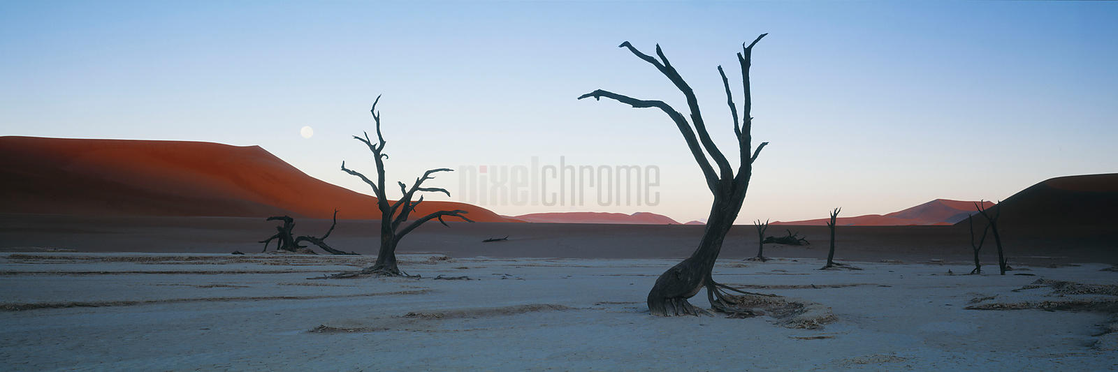Moonrise in the Namib Desert