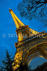 Eiffel Tower in evening light