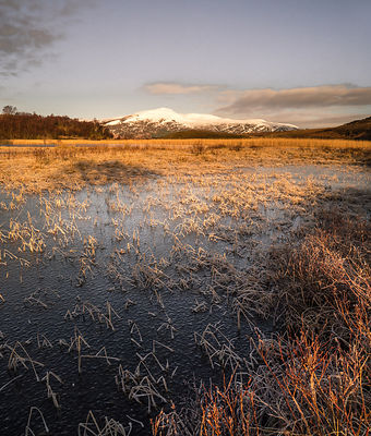 Frosty waters in the glen