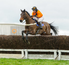 PALYPSO DE CREEK (Claire Hardwick) - Race 4 - Ladies Open - The Cottesmore Point-to-point 26/2