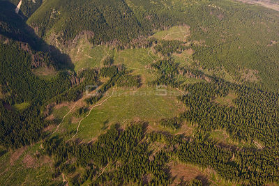 Aerial view of deforested area in spruce forest on the foothills of Mount Krivàn, High Tatras, Carpathian Mountains, Slovakia...