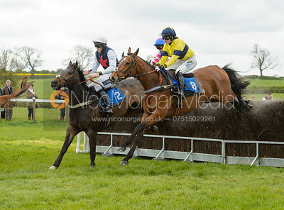 Race 2 - The Quorn Point-to-Point 2017