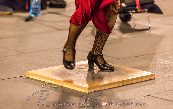 Flamenco Dancer's Feet