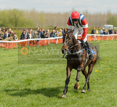 DONE A RUNNER (Dale Peters) - Race 2 Mixed Open - South Notts Point-to-Point 2017