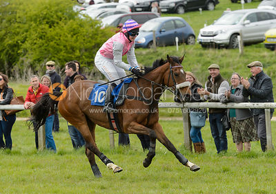 WESTERN DIVA (Claire Hardwick) - Race 4 Ladies Open - The Quorn Point-to-Point 2017