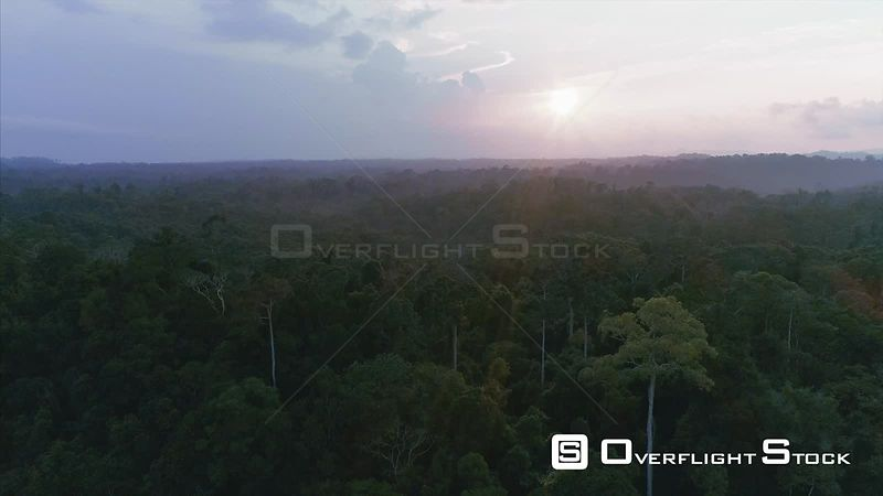 Drone Video of Khao Yai National Park Jungle Wilderness Thailand