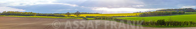 Panoramic view of fields in Hampshire during spring