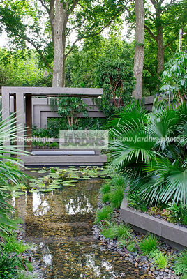 Contemporary garden, Exotic garden, Garden construction, Palm tree, Tropical garden, Water garden,