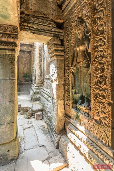 Angkor Wat complex. Corridor with carvings, Cambodia