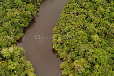 Aerial view of Oxbow lake in Amazon Rainforest on the Yavari / Javari River, Peruvian Bank, Peru