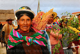 Aymara woman wearing traditional dress carrying quinoa, Potosí Department, Bolivia