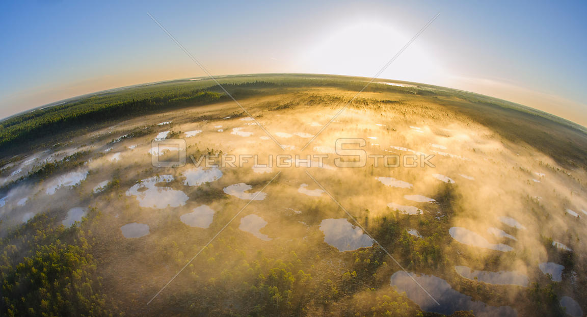 Aerial fish-eye view of fog covered bog pools at sunrise, Alam-Pedja Nature Reserve in Tartumaa, Estonia, May 2013.