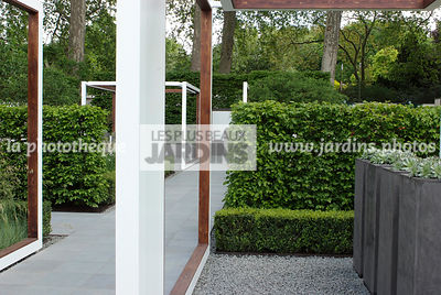 Contemporary garden, Digital, Pergola