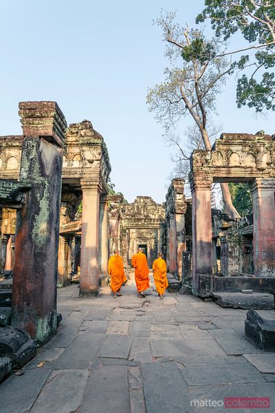 Three buddhist monks inside Angkor temples, Cambodia