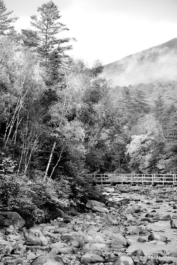 FALL COLORS AUTUMN FOLIAGE BRIDGE MOUNTAIN RIVER KANCAMAGUS HIGHWAY WHITE MOUNTAINS NEW HAMPSHIRE BLACK AND WHITE VERTICAL