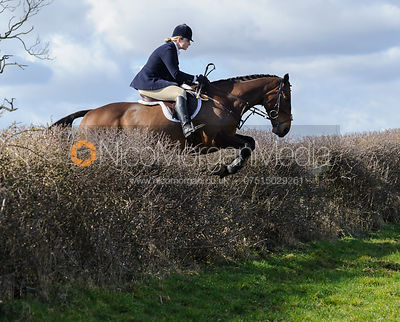 Lara Hellyer jumping a hedge behind Ladywood Lodge