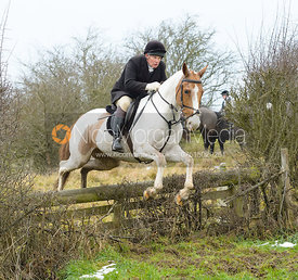 Martin Reason jumping the hunt jump at Newbold - The Fitzwilliam Hunt visit the Cottesmore at Burrough House