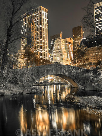 Evening view of Central Park in New York City