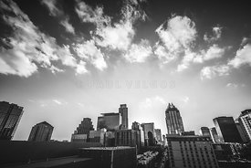 Austin Texas Black and White Photography