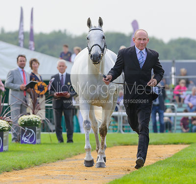 Craig Nicolai and JUST IRONIC - The first vets inspection (trot up),  Land Rover Burghley Horse Trials, 3rd September 2014.