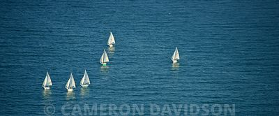 Aerial of sailboats of off of Long Beach