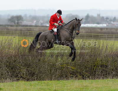 David Manning jumping a hedge at Sheepwash - The Belvoir at Mount Pleasant