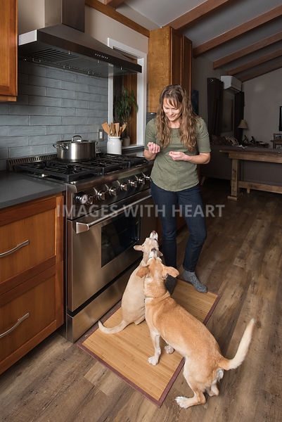 Dogs in Kitchen Getting A Treat