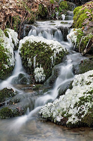 Coed Hafod Falls in winter