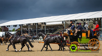 Royal_Windsor_Horse_Show_2017_019