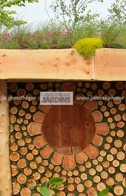Bizarre, Garden construction, Garden shed, Moss, Wood, Digital, Green roof, Thrift