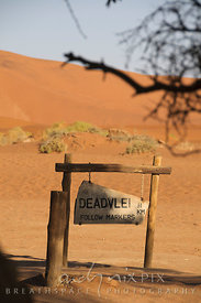 Rustic wooden sign post to pointing to Dead Vlei, pink-orange sand dune in background