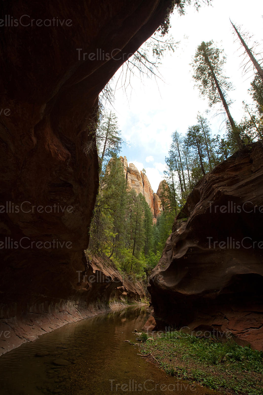 Slot canyon at the end of the West Fork Trail formed from millions of years of river erosion, Redrock State Park, Sedona, Ari...