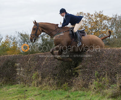 Jumping a big Cottesmore hedge