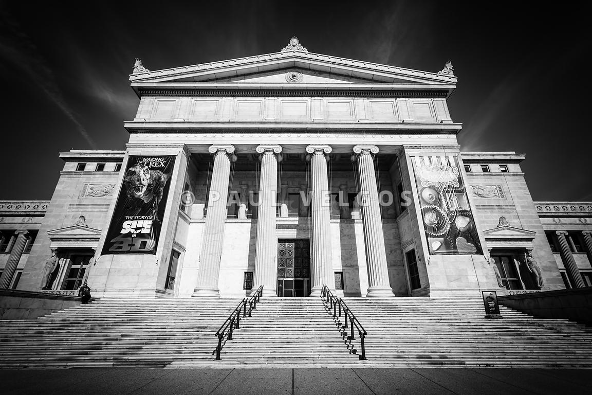 Chicago field museum in black and white