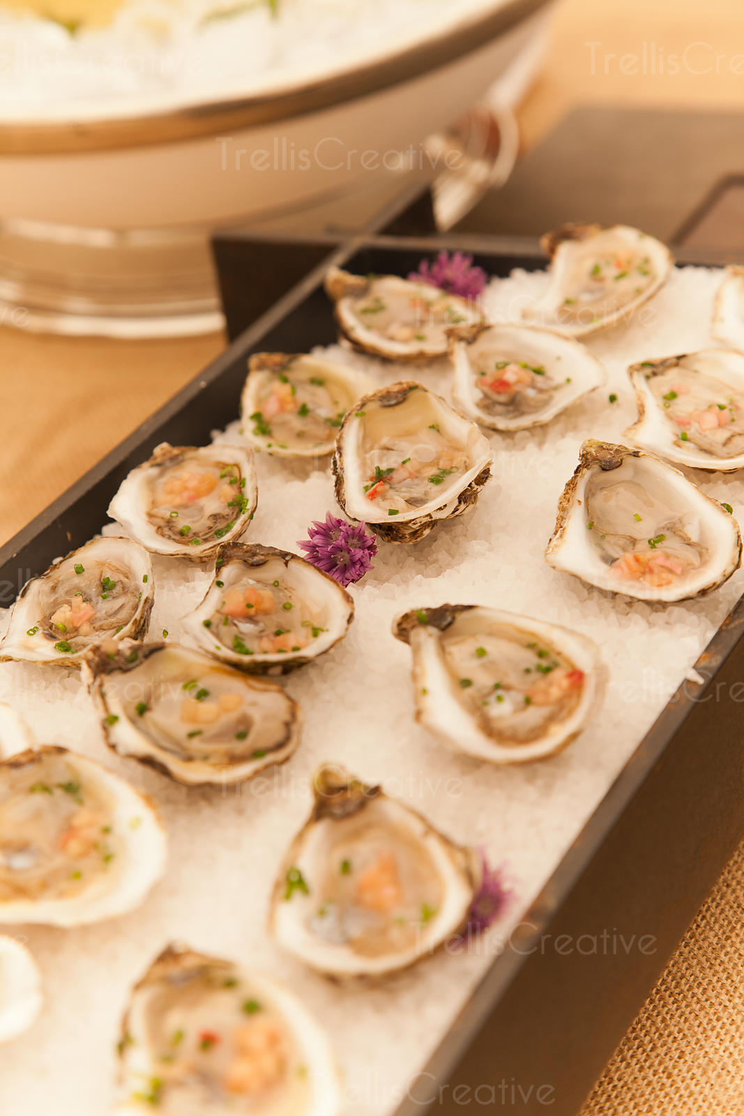 A platter of fresh organic raw oysters on ice at restaurant