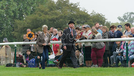 Jane and William Cross - cross country phase,  Land Rover Burghley Horse Trials, 6th September 2014.