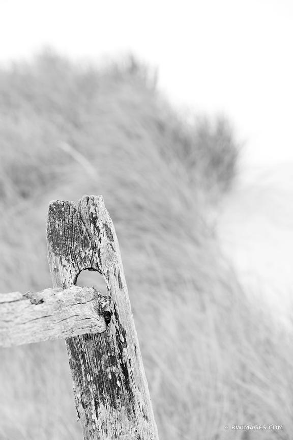 WEATHERED FENCE FIRST ENCOUNTER BEACH EASTHAM CAPE COD MASSACHUSETTS BLACK AND WHITE VERTICAL