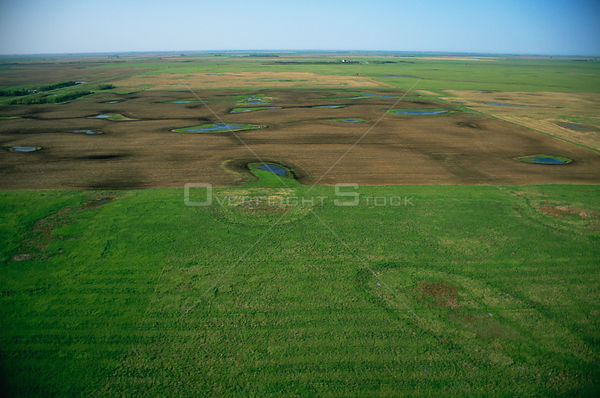 Aerial view of prairie potholes with agricultural encroachment, North Dakota, USA, 2003