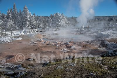 gyser_field-2071_January_21_2018_Nat_White