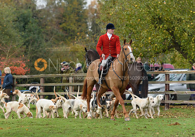 The Cottesmore Hunt at Braunston 8/11