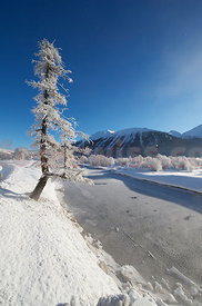 Winter along the Inn River in the Engadine Valley