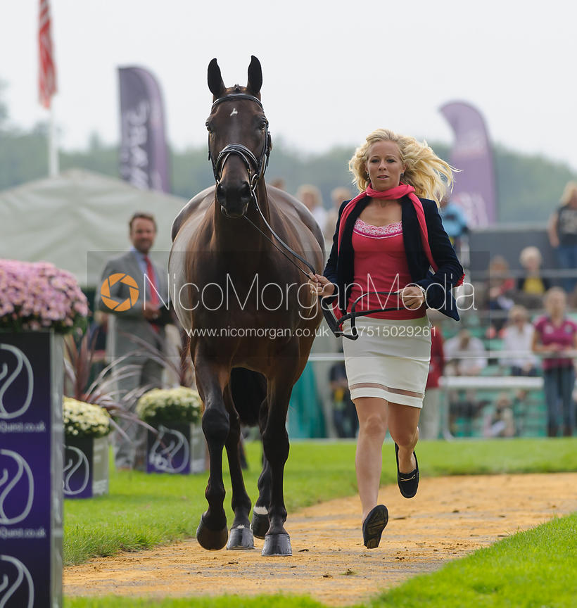 Coral Keen and WELLSHEAD FARE OPPOSITION - The first vets inspection (trot up),  Land Rover Burghley Horse Trials, 3rd Septem...