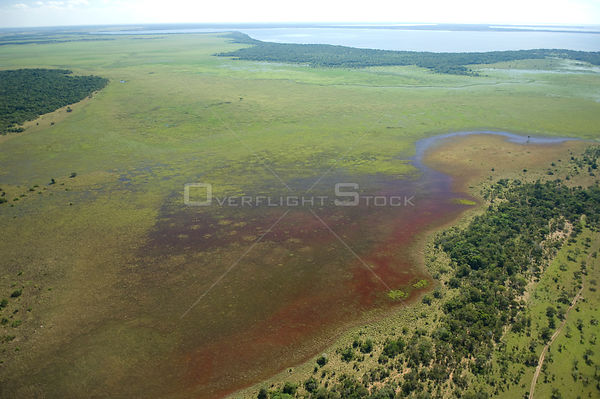 Aerial view of red algae (?) near the shores of Lake Guachuna during the flood season, in the region of the great lakes of th...