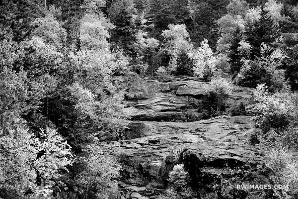 CRAWFORD NOTCH STATE PARK WHITE MOUNTAINS NEW HAMPSHIRE BLACK AND WHITE