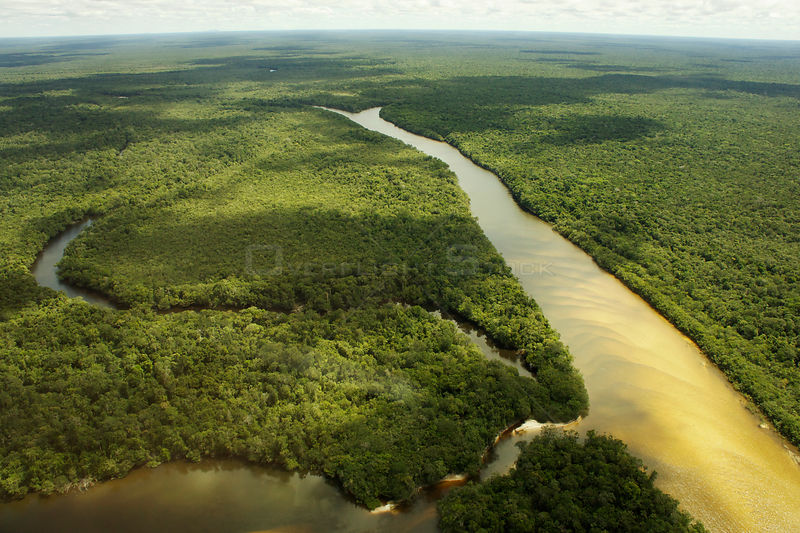 Aerial shot of Rio Branco, a tributary of the Rio Negro and flooded forest or 'Varzea forest', Amazon rainforest, Amazonas, B...