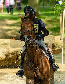 Louise Harwood and DOVEVALE LAWMAN, Fairfax & Favor Rockingham Horse Trials 2018