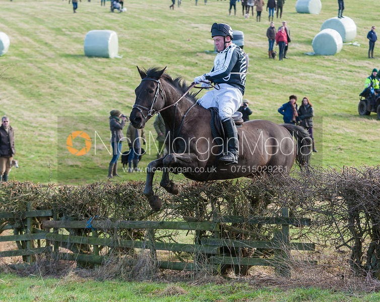 Household Cavalry Cross Country Ride 2013