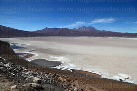 Lakes on edge of Salar de Carcote and Aucanquilcha volcano, Region II, Chile