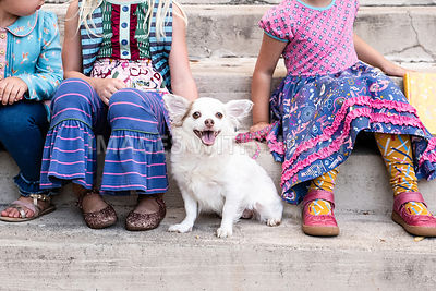 Small White Dog Sitting Between Girls
